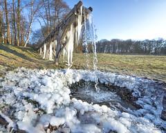Sub zero (Bram de Jong) Tags: winter weather oosterbeek gelderland glk icicles landscape wideangle nikond500 nederland tree sky road snow
