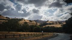 Soften Golden Hills No 2 (Charlie Day DaytimeStudios) Tags: afterastrom ca cloudy cloudyday eastbay eastbayregionalparks fallcolors hills hillside sunolca sunolpark sunolregionalpark tree trees