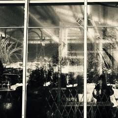 Reflets d'un moment... (woltarise) Tags: reflets tourolympique boutique montréal botanique jardin intérieurextérieur hiver