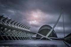 Ciudad de las Artes y las Ciencias (F Arregui.) Tags: spain valencia nubes ciudad costa españa agua azul anochecer mwn