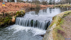 Bradgate Country Park 18th February 2018 (boddle (Steve Hart)) Tags: newtownlinford england unitedkingdom gb bradgate country park 18th february 2018 steve hart boddle steven bruce wyke road wyken coventry united kingdon great britain canon 5d mk4 6d 100400mm is usm ii 2470mm standard wild wilds wildlife life nature natural bird birds flowers flower fungii fungus insect insects spiders butterfly moth butterflies moths creepy crawley winter spring summer autumn seasons sunset weather sun sky cloud clouds panoramic landscape