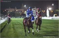 IMG_7198 copy (Services 33159455) Tags: qatar doha horse racing qrec emir horseracing raytohgraphy