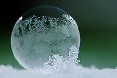 365 - Image 58 - Frozen Bubble... **Explored** (Gary Neville) Tags: 365 365images 5th365 photoaday 2018 sony sonyrx10iv rx10iv rx10m4 m4 polaroid250d frozenbubble frozen garyneville