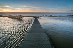 High tide at Crezeepolder (2) (Rob Schop) Tags: wideangle zonsopkomst f56 landscape sonya6000 water nederland outdoor ridderkerk ochtend crezeepolder pathway samyang12mmf20 a6000 morning hightide sunrise