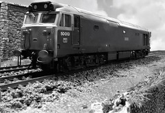 50 013 'Agincourt' Awaits a Green Light. (ManOfYorkshire) Tags: class50 50013 agincourt railblue britishrail hornby scale model railway train diesel locomotive scunby mainline signalcheck 176 oogauge detailed bw blackwhite