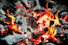 No Marshmellows (floralgal) Tags: fire nomarshmellows fireplace woodburningfire fireandflames fireabstract chimney brickovenfire charcoal abstract