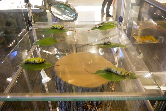蘭陽博物館-1160890