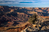 History unveiled (Bill Bowman) Tags: grandcanyon lipanpoint coloradoriver unkardelta cliffrose purshiamexicana arizona grandcanyonsupergroup