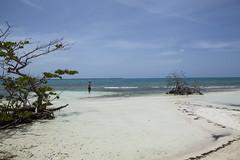 IMG_3634 (CandiceLobo) Tags: belize belizeandreams beach besttimes honeymoon travel tropical adventure happyplace beautiful ocean blue green nature getaway
