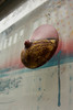 Intra Larue 964 (intra.larue) Tags: belgique belgium bruxelles urbano urbana urban urbain téton teta street seno sein pecho moulding moulage moldeado intra brust breast boob arte art