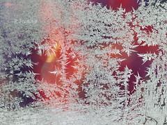 Fire and Ice (R_Ivanova) Tags: nature ice frost frozen winter window white red light lights sony rivanova риванова зима лед скреж светлини color colors cold
