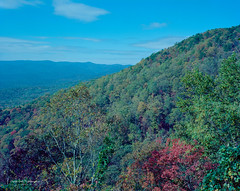East Ridge Trail View Plate 2 (Mark Sinderson) Tags: 4x5 amicalolafallsstatepark camerabodies chamonix045f1 fall film ga geology georgia kodakektar100 largeformat4x5 lenses locations mountains nikkorw135mmf56 northamerica seasons states us usa unitedstates