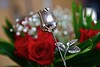 Roses for my Valentine! (ineedathis, Everyday I get up, it's a great day!) Tags: sterlingsilverrose redroses happyvalentinesday bouquet flowers babysbreath dedication mywife love nikond750 bokeh