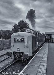 20171008-IMG_6862-Edit-Edit (deltic21) Tags: deltic deltics 55 class napier type 5 english electric coco clag british rail railway railways train trains tracks bluebell preserved presevation gala diesel loco locmotive engine traction power thrash br blue green two tone monochrome bw canon sussex lineside trees station foxfield horsted keynes east grinstead sheffield park classic heritage scenery scenic countryside retro vulcan foundry track 55009 55002 55019 alycidon royal highland fusiliers kings own yorkshire light infantry