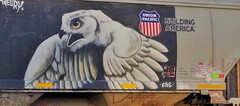 Owl (Fan-T) Tags: owl union pacific building america graffiti covered hopper freight car
