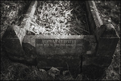 Norman Griffiths :  War Child (Garry Corbett) Tags: rowleyregis bumblehole theblackcountry netherton titanic canals graveyard pub mapardoesatnetherton cgarrycorbett2018 bluejazzbuddha