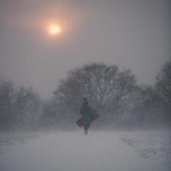 London snow (millerartwork) Tags: mu9a5070ldn london snow artic hampstead heath londonsnow weather toboggan sled kite hill kitehill
