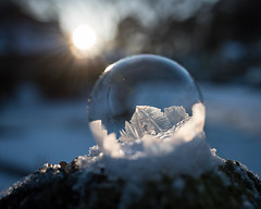 Snow Globe - 1
