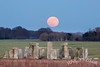 Super Blue Blood Moon is seen rising over Stonehenge (LongLensPhotography.co.uk - Daugirdas Tomas Racys) Tags: blood moon super blue 2018 england january stonehenge astro bloodmoon moonrise rural superbluebloodmoon supermoon winter