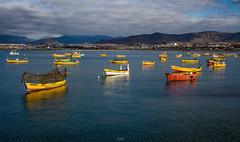 Pre-sushi (Cruz-Monsalves) Tags: botes boats mar sea bahia playa pescadores fisherman fishermans yelow amarillo agua water coquimbo chile southamerica sudamerica laserena cloudy clouds nubes