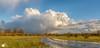 RST_Uiterwaarden-1-20180211-9 (Robert Stienstra Photography) Tags: riverbanks floodplanes landscape landscapes landscapephotography landschappen uiterwaarden wageningen gelderland geldersestreken landschap sky skies cloud clouds skyscape skyscapes panorama panoramaphoto panoramas panoramic nature naturalforces weather fields field