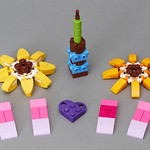 30404 Friendship Flower -P1040822 thumbnail