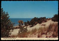 Beautiful Duneland Beach, circa 1960 - Chesterton, Indiana (Shook Photos) Tags: postcard postcards chrome chromepostcard beach shore shoreline sand dune dunes indianadunesstatepark indianadunes lakemichigan chestertonindiana chesterton indiana portercounty