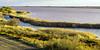 salins du midi (rey perezoso) Tags: 2017 aiguesmortes green eu salinas saline europa france camargue provence water wasser canal gras
