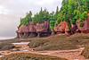 Low Tide (Malcolm Thornton Photography) Tags: ifttt 500px red rocks state park landscape canada sunrise water landscapes morning sea bay ocean dawn stone rock plant north america plants colorado united states the new brunswick mineral inlet cliff seaweed cliffs low tide dirt sandstone daybreak fundy tides bodies of flower pots time amphitheater hopewell mud flats flowerpots flowerpot cape break day cave levels