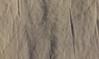 kaeferautobahn (waynorth) Tags: spuren sand käfer käferspuren sanddüne grancanaria canaryislands spain