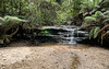 Leslie Falls (Eddy Summers) Tags: waterfall lesliefalls lawson bluemountains nature landscape pixelshift pentaxkp river creek water forest tree nsw australia da15mmf4