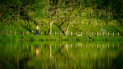 Breathe as One (Jimweaver) Tags: mirror nature kongfu yoga exercise pond lakeside taiwan taipei green water 池 湖 park path 公園 asia 植物 禪 太極 瑜珈 運動 鏡像 倒影 亞洲