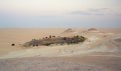 Great Sand Sea Oasis (robertdownie) Tags: 4wd terrain egypt great sand sea isolated libya north africa sahara desert arid climate landscape nature no people oasis outdoors physical geography remote dune scenics sky tranquil scene tranquility film