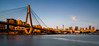 Anzac Bridge at Golden Hour (yecatsiswhere) Tags: 2017 anzac glebe sydney blackwattle bridge goldenhour sunset harbour sydneyharbour architecture landscape water waterfront foreshore bay park