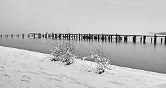 Winterpanorama (garzer06) Tags: winter schnee eis deutschland panorama winterpanorama landschaft mecklenburgvorpommern landschaftsbild bootssteg landscapephotgraphy landschaftsfoto naturphoto naturphotography landschaftsfotografie