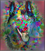 Dreaming of wolves (jaci XIII) Tags: lobo fantasia animal canídio wolf canine fantasy