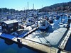 Ice in the Harbour (dbsteers) Tags: davesteers sunshinecoast winter2018 boats harbour gibsons