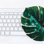 Minimalistic flat lay with key board and a green leaf thumbnail