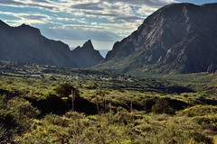 A Look Across the Chisos Basin Area to Peaks of the Chisos Mountains (Big Bend National Park)