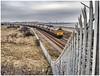 On the fence (Blaydon52C) Tags: class66 gbrf gbrailfreight hartlepool durham countydurham railway rail railways railfreight trains train transport locomotive locomotives loco locomotion west teeside