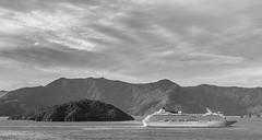View from Karaka Point, Marlborough Sounds (russellstreet) Tags: newzealand ship cruiseship cloud overcastcloud southisland bw karakapoint allportsisland picton marlboroughregion queencharlottesound blackandwhite