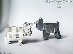 Origami Simples Caniches - Barth Dunkan. (Magic Fingaz) Tags: anjing barthdunkan chien chó dog gremlins hond hund köpek monster origami perro pies пас пес собака หมา 개 犬 狗