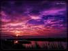 Ηλιοβασίλεμα στη Λιμνοθάλασσα στο Καλοχώρι Θεσσαλονίκης !!! (Spiros Tsoukias) Tags: hellas ελλάδα ηλιοβασίλεμα ήλιοσ ουρανόσ σύννεφα φύση διακοπέσ μακεδονία greece sunset sun sky clouds nature holidays macedonia grèce coucherdesoleil soleil ciel nuages vacances macédoine griechenland sonnenuntergang sonne himmel wolken natur ferien mazedonien grecia puestadelsol sol cielo nubes naturaleza vacaciones tramonto sole nuvole natura vacanze griekenland zonsondergang zon hemel natuur vakantie macedonië греция закат солнце небо облака природа праздники македония καλοχώρι λιμνοθάλασσα θεσσαλονίκη thessaloniki