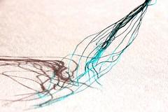 Silk (overthemoon) Tags: silk threads shadows macro shapes macromondays novel myfavouritenovelfiction alessandrobaricco