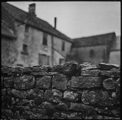 Harshness (*altglas*) Tags: mediumformat mittelformat 6x6 120 film analog ilforddelta3200 bw monochrome zeiss superikonta village dorf mauer wall vintage