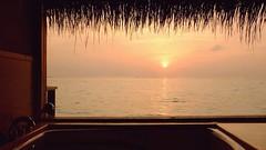 Lagoon Villa - Taj Exotica Resort and Spa, Maldives (Matt@PEK) Tags: taj hotel resort maldives