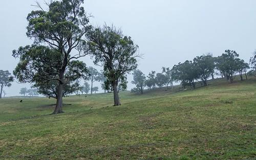 Lot 16 & 17 Bannaby Road, Taralga NSW