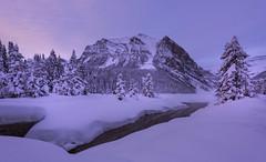 Winter Wonderland (Banff NP, Alberta, Canada) (Sveta Imnadze) Tags: winter landscape lakelouise banffnp alberta canada
