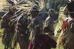 IMG_1093 (stevefenech) Tags: png papau new guinea stephen fenech goroka mount hagen festival indigenous travel adventure colourful