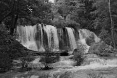 Waterfall Series ( Back to black ... and white) (elhawk) Tags: yatochkusam waterfall lacandonforest chiapas mexico bw